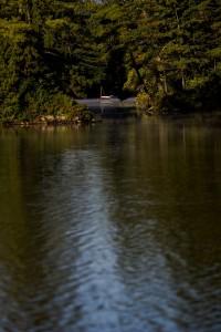 conway-lake-leecamerawork255